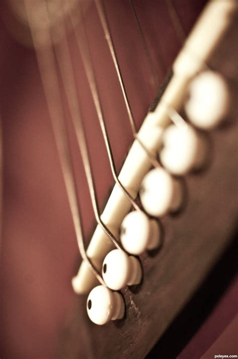 Tali Gitar tali gitar picture by maclu2iaf for instruments photography contest pxleyes