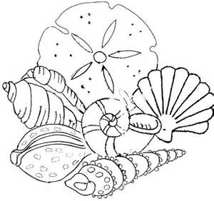 seashell coloring pages seashells coloring pages coloring home