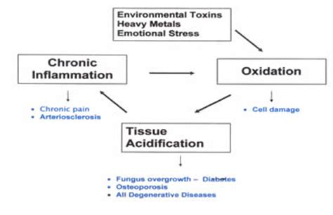 Acute Lead Detox by Heavy Metal Poisoning Nervous System Poisoning Heavy