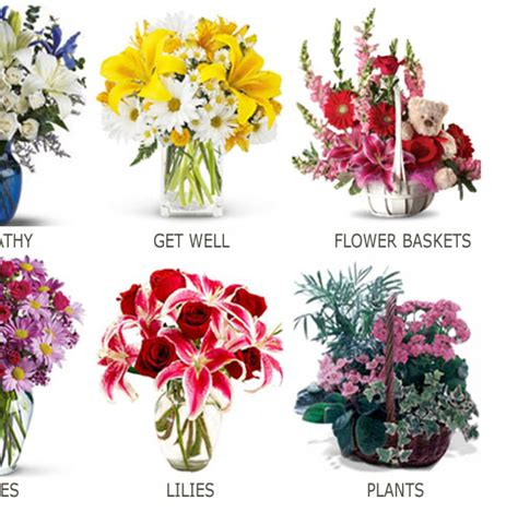 plant food that comes with flowers plant food that comes with flowers plant food for cut