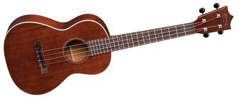 ukulele lessons in dublin instruments hibernia academy