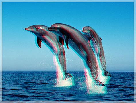 imagenes en 3d real d fondos de pantalla 3d con movimiento real fondos de