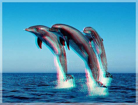 imagenes en 3d animadas uncategorized luzpixel p 225 gina 3