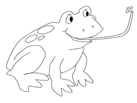 imagenes de un sapo para dibujar faciles colorea tus dibujos rana cazando mosca para colorear y pintar