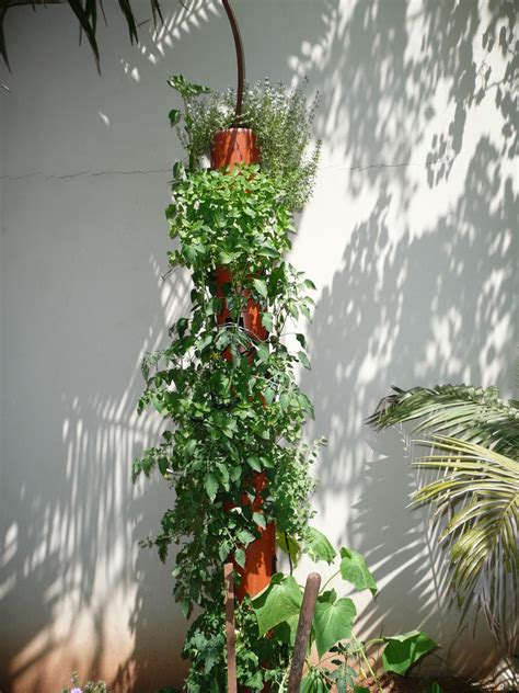 Organic Vertical Gardening Diy Organic Vertical Planter Shtf Prepping Central
