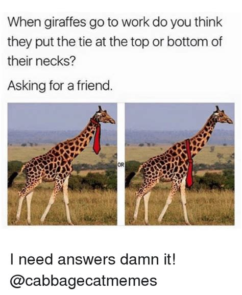 I Need Answers Damn It 2 by When Giraffes Go To Work Do You Think They Put The Tie At