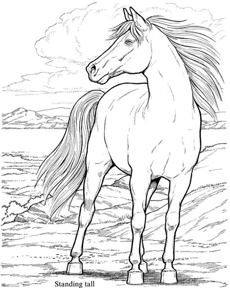wild horses coloring pages to print wild horses coloring pages getcoloringpages com