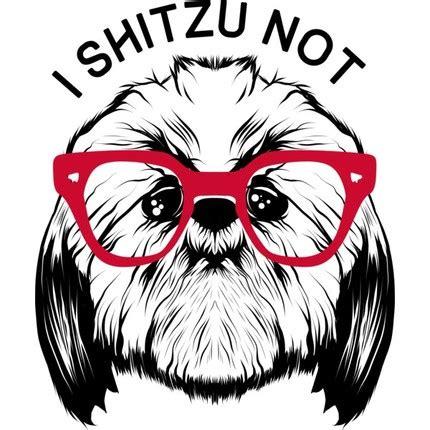 i shih tzu not hoodie quot i shih tzu not quot shirt that awesome shirt