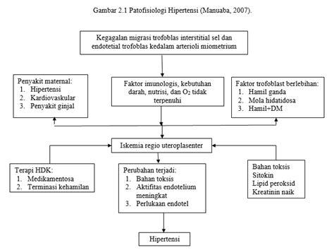 Patofisiologi Penyakit kumpulan bagan patofisiologi patogenesis midwifery