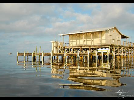 river house plans on stilts houses on stilts in florida homes on stilts house plans stilt home mexzhouse com