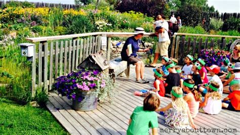 16 things to do in central alberta this summer merry