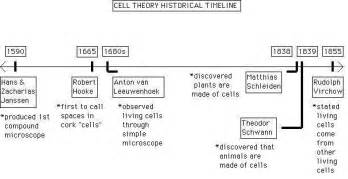 Which Hypothesis Led To The Discovery Of The Proton Flashcards Cell Theory Cell Theory Studyblue