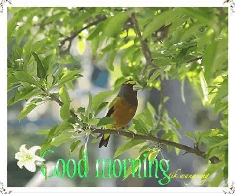 good morning bird sitting  tree