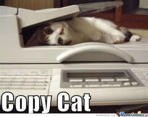 Copy Cat Meme - copy cat by recyclebin meme center