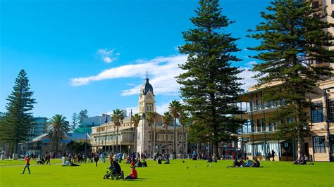 adelaide holidays find cheap  packages  expedia