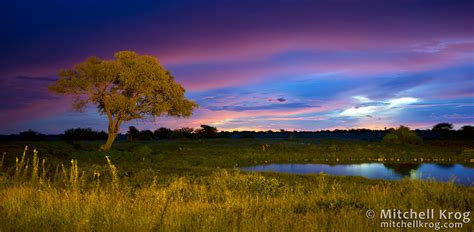 photo okaukuejo camp at sunset etosha national park