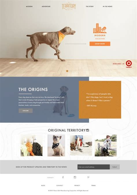 web design inspiration engineering territory dog collection territory webdesign