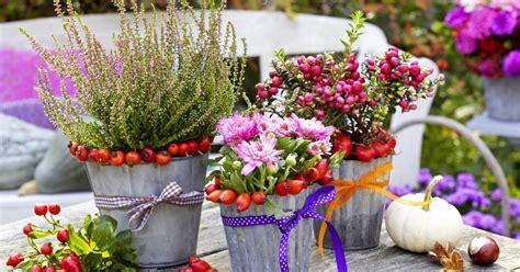 garten im herbst bepflanzen herbst pflanzen und deko f 252 r balkon und terrasse mein