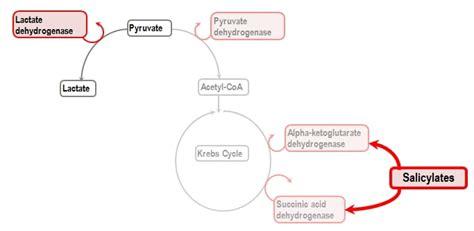 salicylate toxicity rebel em emergency medicine blog
