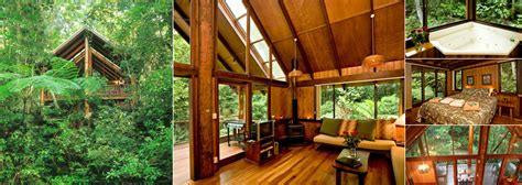 luxury tree houses luxury tree houses you ve been dreaming of meet kevin