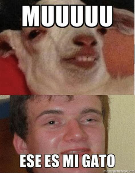 ese es mi gato memegeneratornet meme on sizzle