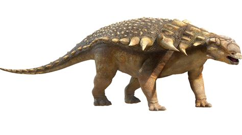 giochi di dinosauri volanti guida ai dinosauri scoprite le loro principali