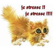 Publi&233 Le 25/03/2012 &224 1400 Par Abenchaalors Tags  Gif Stress