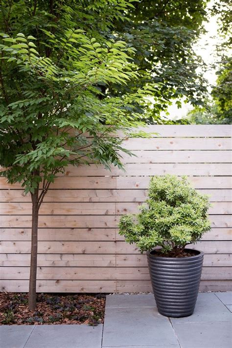 Black Planters Large by 25 Best Ideas About Black Planters On
