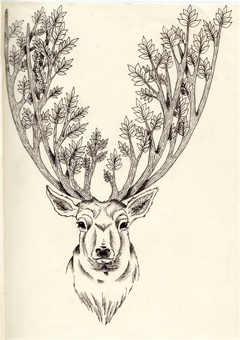 stag tattoo designs rosebud illustration sketchbook page 2