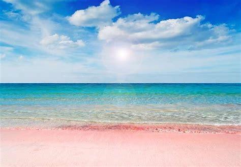 Bianca Home Decor sardegna le spiagge pi 249 belle dell isola foto