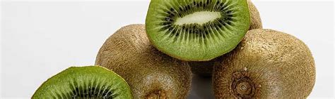 can dogs eat kiwi can dogs eat kiwi facts