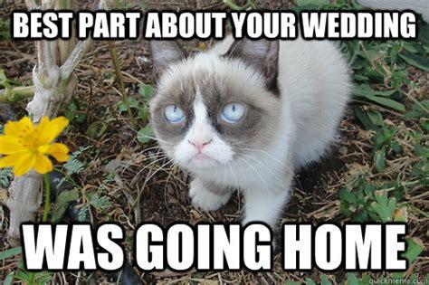 Grumpy Cat Wedding Meme - grumpy cat wedding meme 28 images 10 grumpy cat memes