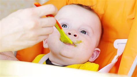 beikost ab wann die entwicklung deines babys im 5 monat babyplaces