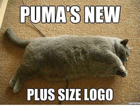 Memes Pumas - funny memes and puma memes of 2017 on sizzle
