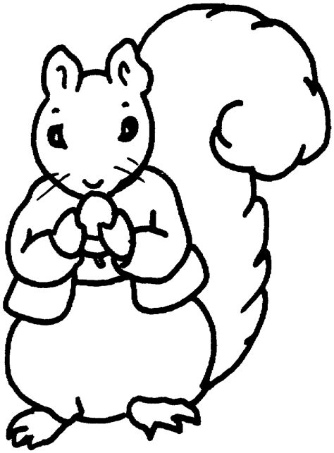 free coloring pages of squirrels