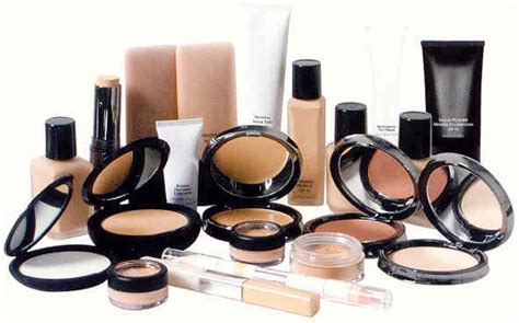 Themakeupgirls 99 Products by Makeup Products For The College On A Budget College