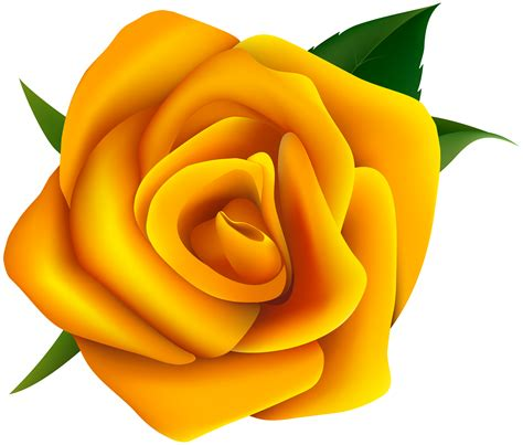 Rosa Clipart - yellow clipart clipground