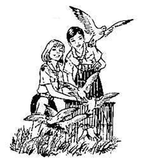 cassetta pronto soccorso scout artcile6 vive les scouts d europe et les dessins de