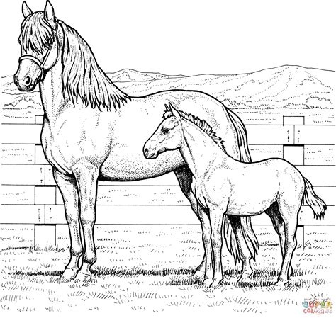 coloring pages of horse and foal mare and colt coloring page free printable coloring pages