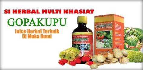 Obat Herbal Noni juice gopakupu obat herbal terbaik di planet bumi manfaat noni mengkudu