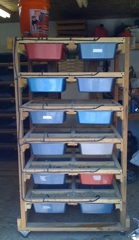 Rodent Racks For Sale by Rodent Rack For Sale