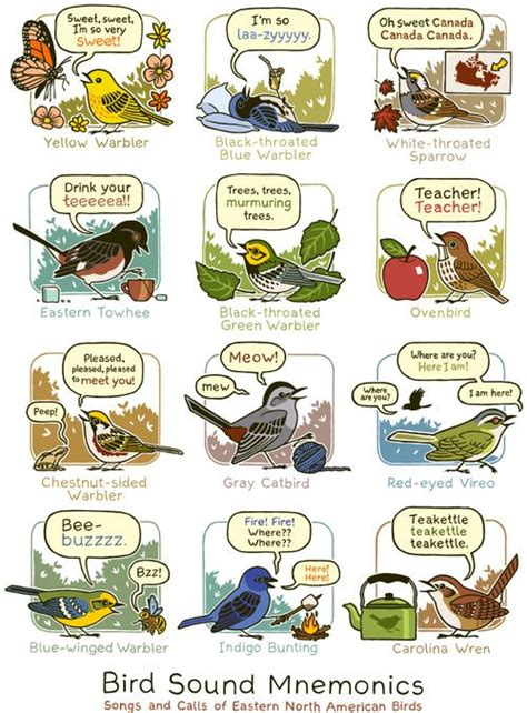 13 best images about nature for kids on pinterest nature