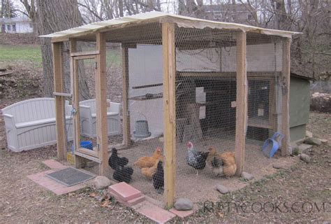 how to care for chickens in your backyard backyard chicken care chicken coops kittycooks