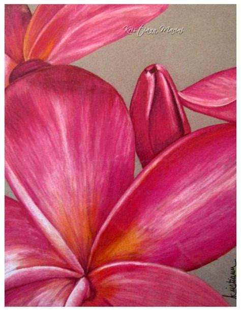 hawaiian flower painting pin by kristiann marini on colored pencil