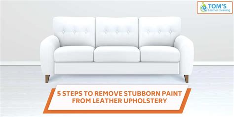 How To Remove Paint From Upholstery by 5 Steps To Remove Stubborn Paint From Leather Upholstery