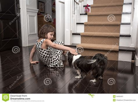 dogs inside the house child playing with a dog inside the house stock image image 34050401