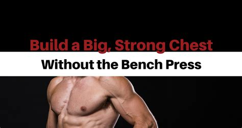 bench press lockout bench lockout 28 images 445 lb bench press lock out 7 quot from chest level at 205
