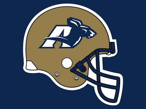 The Univeristy Of Akron Mba by 1000 Images About Of Akron Zips On