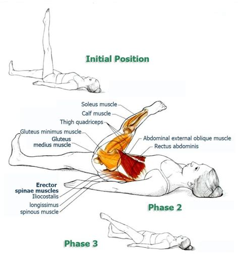 156 best health physical therapy images on crunches and ab exercises