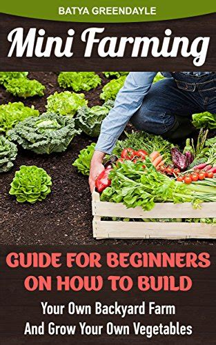 Mini Farming Guide For Beginners On How To Build Your Own How To Make Your Own Vegetable Garden
